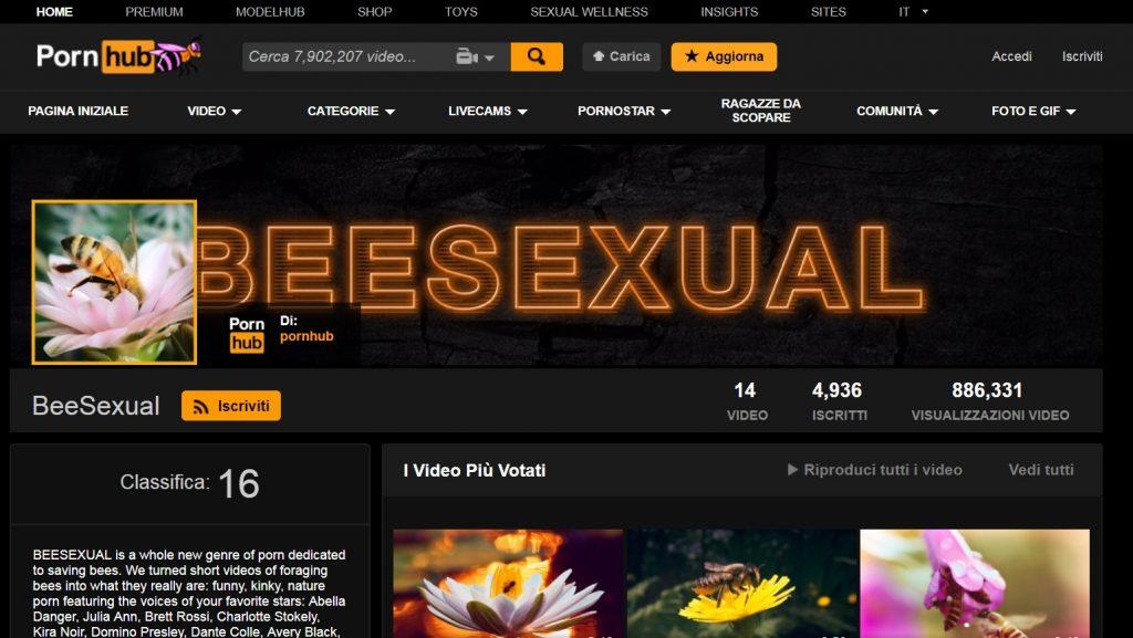 Beesexual, il canale di PornHub per salvare le api
