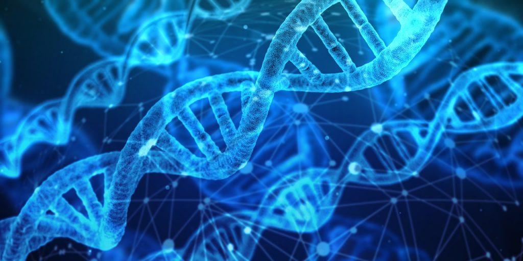 La Scienza lo dice: «Non esiste un gene gay, ne esistono migliaia»