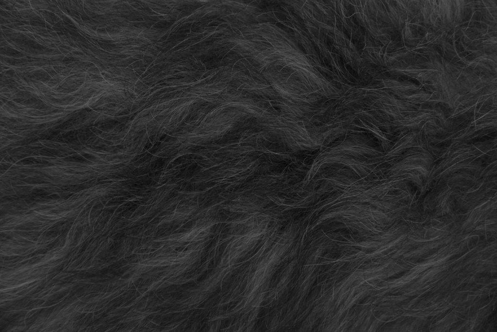 Sesso orale: non sempre il pelo tira più di un carro di buoi