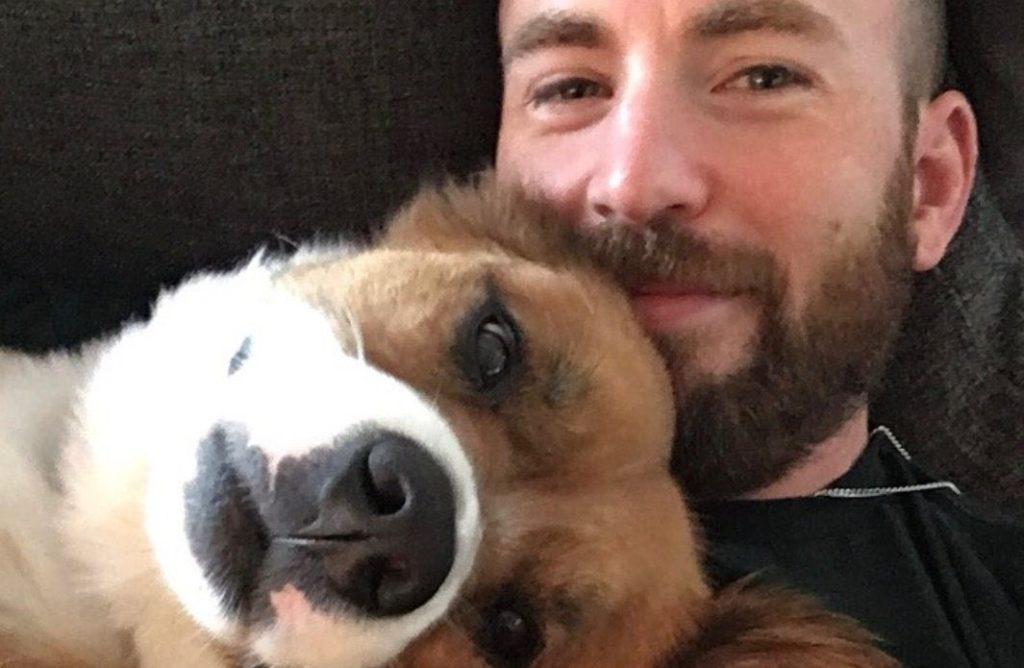 Chris Evans pubblica per errore una foto intima nelle Instagram Stories e Twitter esplode