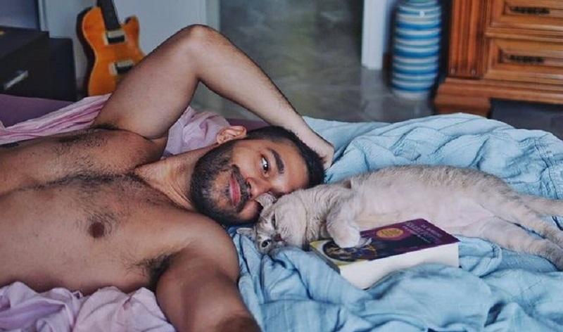 CATS VS. DOGS: la sfida degli animali da compagnia